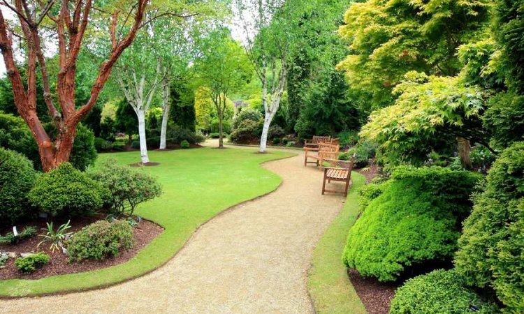 Jardipaysage Saint-Jean-le-Vieux - entreprise création d'espaces verts